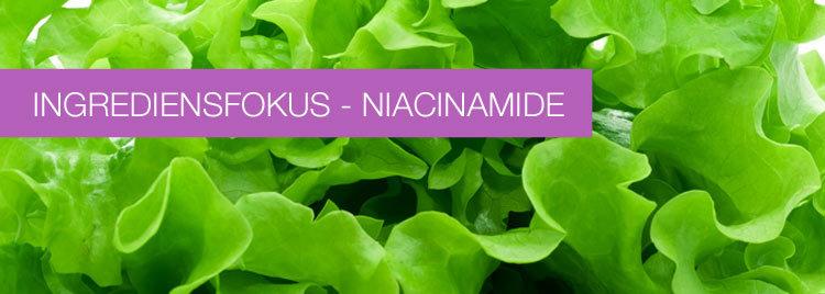 Ingrediensfokus – Niacinamide (vitamin B3)